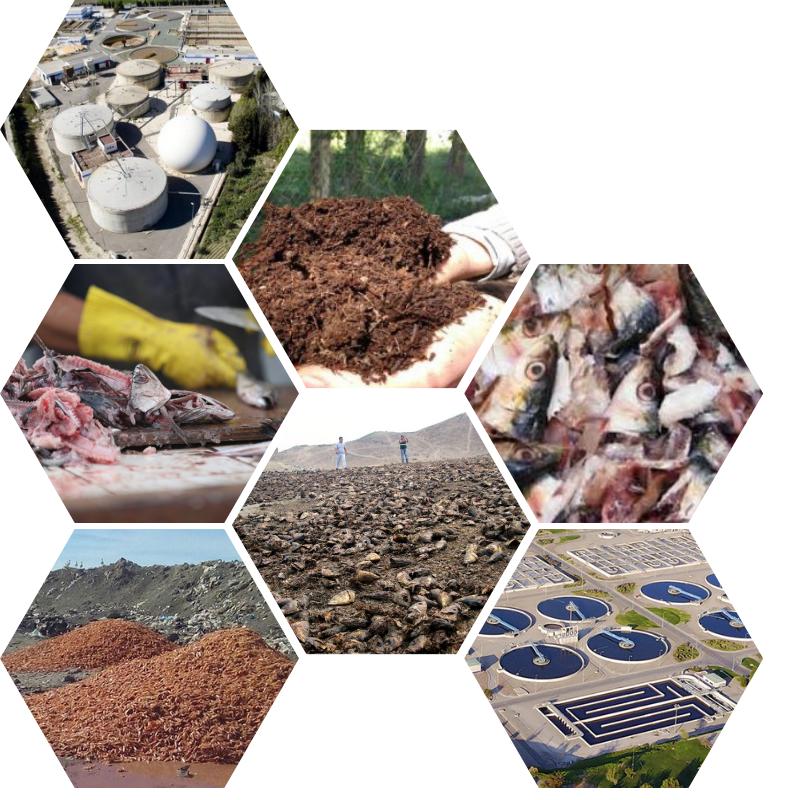 Valorizacion de residuos hidrobiologicos